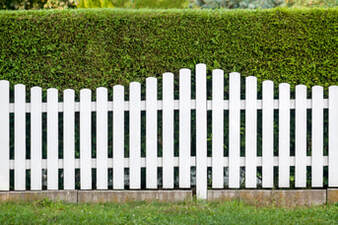 White wooden picket fence in front of shrubs
